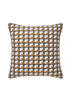cushion iosis ilioa