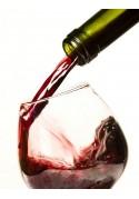 Wines cellar